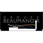 Beaumanoir