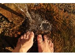 Rechercher un emploi les pieds dans l'eau